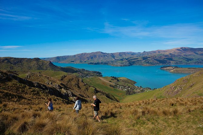 Guided walking tour on Banks Peninsula, a spectacular extinct volcano within 30 minutes of Christchurch. Experience world class views and see some of New Zealand's most stunning coastlines with our experienced local guides.  Transport and catering included, magnificent photo opportunities and a day to remember forever.