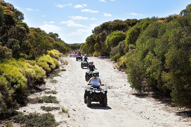 Explore an otherwise inaccessible part of Kangaroo Island on a guided ATV tour through open grassland, native bush and rocky terrain. Master the controls of your own bike as your group zooms past gorgeous scenery, the Southern Ocean, and Australian wildlife such as kangaroos, koalas and more. Whether you take the introductory option or the more challenging tracks, your expert guide ensures a safe, fun ride for all levels of experience (even kids are allowed to participate).
