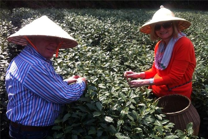 There is no better place to experience the best green tea, Longjing in Hangzhou than other places in China. Hangzhou is the home of tea and silk. Longjing tea is considered the best green tea in China. Enjoy a 6-hour tour accompanied by your knowledgeable guide and skillful driver, visit the National Tea Museum, Tea Plantation, Meijiawu Tea Village, try the Longjing Tea and talk with tea famers. You'll not only learn about Chinese tea culture, also immerse yourself in the process of tea-making and beautiful scenery. You have the option to have an authentic home-cooked meal at a local famer's home. To make your trip comfortable and easy, we provide FREE WI-FI, PHONE CHARGER, COLD DRINKS AND UMBRELLA (no extra charge).<br><br>Note: If you come from Shanghai by train, recommend timing: Arrival: Around 9:30am; Departure: Around 18:00pm. Both Hangzhou East train station and Hangzhou railway station are work for this tour. Free charge of train station pick up & drop off service.