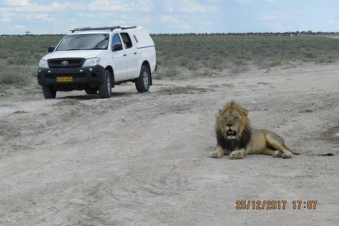 Transfer from Windhoek to Etosha National Park(Okaukuejo, Toshari Inn, Ongava lodges) or vice versa Transfer (Namibia).<br><br>The Price is for One way drop off only. Client can request for another transfer back the next day on 80% of the price.