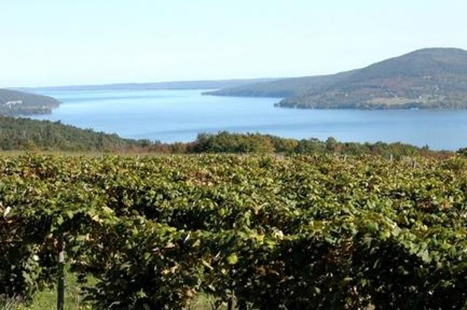 Feel inspired to sip and savor every moment on this half- or full-day guided tour. Your journey will begin with breathtaking views of vineyards. Make your way through three to four wineries on the Canandaigua Wine Trail.