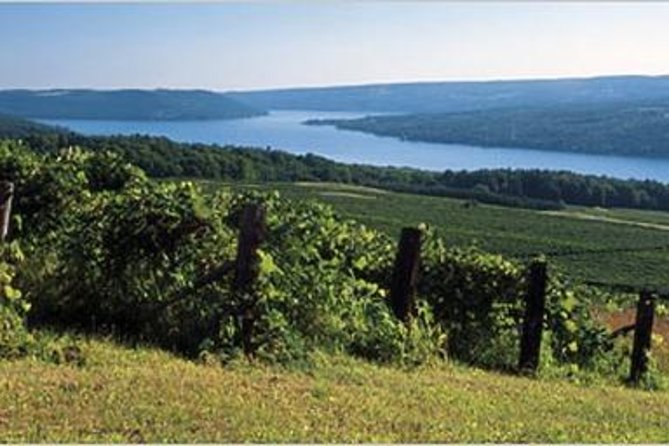 Keuka Lake is the most unusually shaped of all the Finger Lakes and one of the most shallow. Because of its shallow depths Keuka has one of the warmest water temperatures ideal for moderating the environment to grow premium grapes. For this wine tour we will visit 3 or 4 wineries.