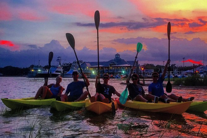 Explore the enchanting and historic Murrells Inlet or the Waccamaw River at either sunrise or sunset. Our professional kayak guideswilltake you around the calmwaters and show you a one of a kindenvironment that is thrivingwith local wildlife.
