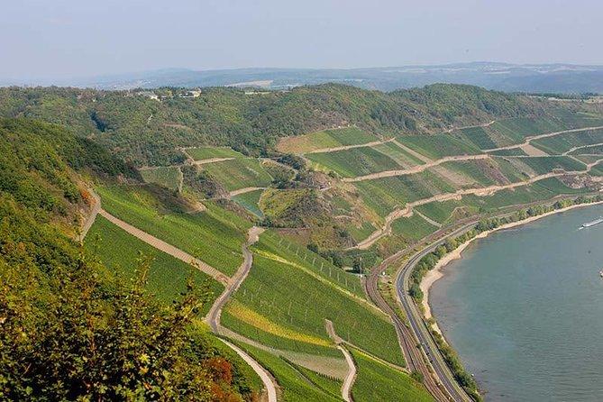 Boppard Icewine and 30 minutes Wine Tasting, Koblenz, Alemanha