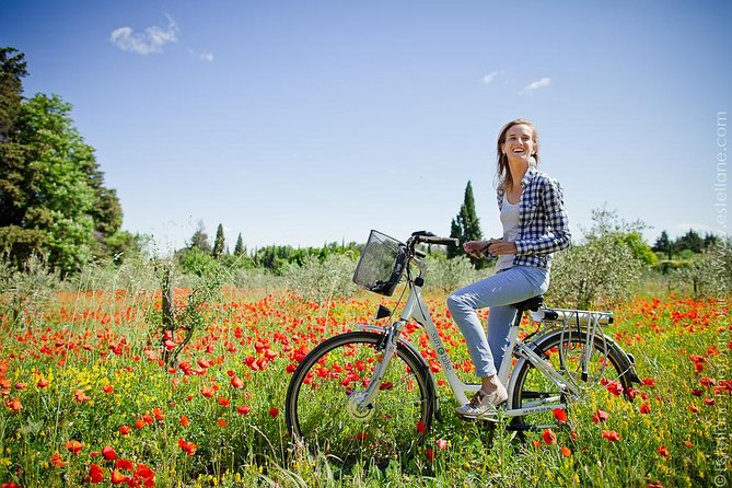 Thanks to this tour you will discover Provence like no others during a Half day excursion. Discovering Provence on an e-bike allows you to enjoy the amazing landscapes and smell all the flavors of this area. <br><br>The Half day excursion start from 9.am - 1.30pm or from 1.30pm - 6.30pm <br><br>You will be guide by a very detailed road-book where you will find all the quiet routes and all the information you need to know during your trip. <br><br>During this Half day excursion in Provence, you will cross all the main touristic sites around St Rémy de Provence. The entrance to the Carrière de Lumières in Les Baux de Provence (the most popular attractions in Provence) is included in the price.
