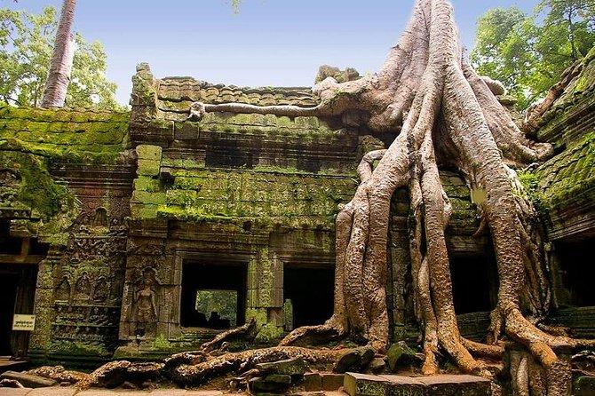 First Day Tour <br><br> Morning:Angkor Wat, Angkor Thom, Elephant Terrace. <br><br> Afternoon:Ta Prohm, Phnom Bakheng for sunset. <br><br> Second Day Tour <br><br> Morning: sunrise at Angkor Wat, Banteay Srei (or Lady Temple). <br><br> Afternoon: Kompong Pluk (floating village).