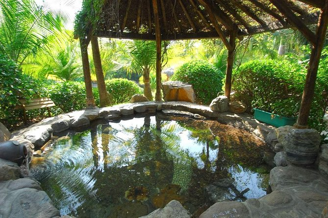 The hot spring water includes trace minerals like iron, manganese, calcium, sodium and potassium which bubbles up to its surface from within the earth at the perfect temperature. The eggs which are placed in the spring cook to a beautiful, soft texture and also absorb the hot spring's minerals which increases its nutritional value and supplements the everyday mineral intake. <br><br>Riyuegu Hotsprings Resort is a sanctuary for those seeking tranquility, therapy and a spiritual time-out. Nestled in the shadows of the Tianzhu Mountains in Xiamen, Riyuegu Hotsprings Resort is China's first property with both a National AAAA Accredited Tourist Attraction.