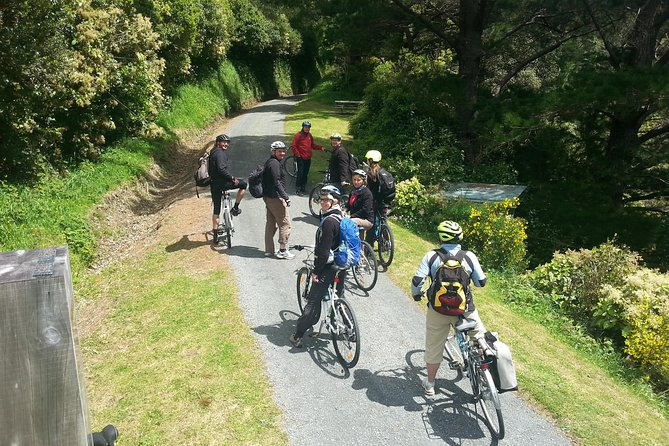Wellington Shore Excursion: Rimutaka Rail Trail Bike Ride, Wellington, NOVA ZELÂNDIA