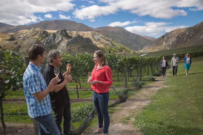 Making wine personal - join Queenstown's original wine tour. Have a fun and relaxed afternoon wine touring accompanied by our knowledgeable wine guides. Meet members of each vineyard team for a close up perspective of the local wines. Discover the reasons why Central Otago has become one of the world's premium wine regions, taste some great local wines & enjoy the spectacular scenery. Pick up and drop off at accommodation or Central Queenstown.  Whether your palate is well developed or simply enthusiastic, as long as you love wine, our tours will delight.