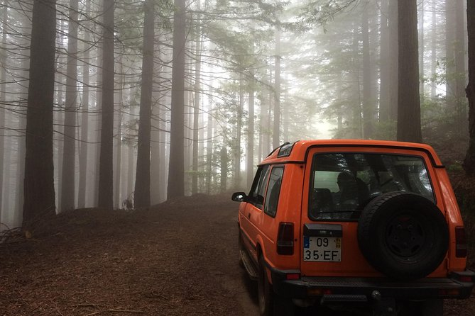 Private 4x4 Tour Full Day, Funchal, PORTUGAL