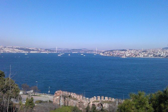 Cruzeiro no Bósforo saindo de Istambul: Ponte de Gálata, Chifre de Ouro, Grand Bazaar, Istambul, TURQUIA