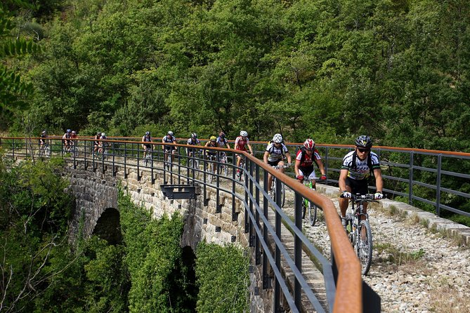 Occupying a former stretch of the Parenzana Railway — which once connected the Italian city of Trieste with the Croatian city of Poreč — the Parenzana Trail has been transformed from a disused track into a vibrant walking and cycle path. On this 4-hour, small-group biking tour, set off from the town of Buje and pass through the region's magnificent landscapes of rolling hills, vineyards, and historic villages.