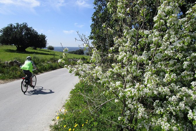 7-Day Sicily Bike Tour of the Baroque Hill Including Accommodation in 3 or 4 star Hotels, Siracusa, Itália