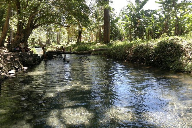 A journey through the rural communities surrounding the Mombacho Volcano to the thermal river and lagoon known as Aguas Agrias, named for the waters slightly acidic taste.