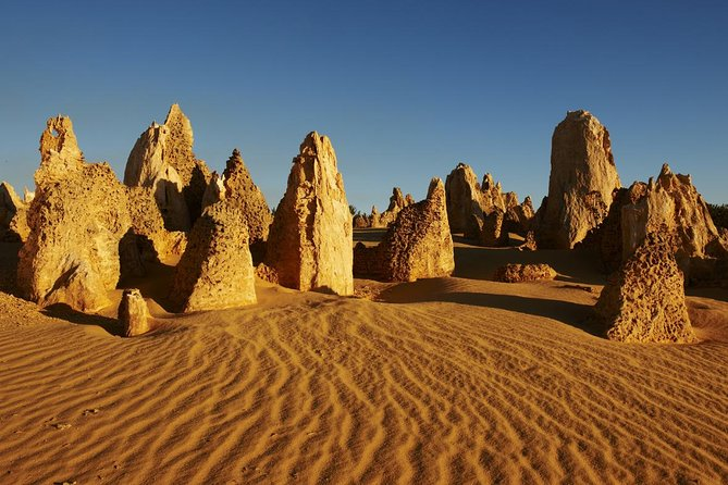 Discover the exquisite beauty of the Pinnacles on this 10.5-hour tour from Perth, and see for yourself why these ancient limestone pillars are a favorite destination for photographers. You'll also visit Yanchep National Park and see Crystal Cave with a park ranger guide. A morning snack and lunch are included.