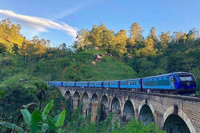 This 4-Day Private Tour in Sri Lanka tour is a perfect introduction to Sri Lanka's amazing sites. Travel along Colombo, Kandy, Dambulla, Sigiriya, Ella, Nuwara Eliya and Kitulgala. Visit a village in Sigiriya by an Ox-Cart ( Free Traditional Lunch), visit the Tooth Temple in Kandy, Climb Sigiriya Rock, visit Dambulla Cave Temple, Hike in Ella, go water rafting in Kithulgala, see a tea factory, and much more. This is 100 per cent suitable if you looking for an adventure in Sri Lanka. Hotel accommodation with breakfast, all entrance Fees, transportation and special guides for all UNESCO sites are all included in the price.