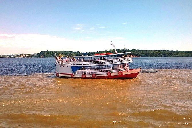 Recorrido por la ciudad de Manaos y punto de encuentro de las aguas durante medio día, Manaus, BRASIL