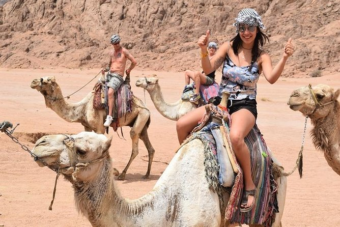 Make the most of your holiday with this 5 in 1 trip out into the Sinai Desert. Start with action-packed activities: quad biking and camel riding. Before travelling on a traditional Bedouin camp to sip tea and watch the sunset over the rose coloured mountains of Sharm el Sheikh. You will then enjoy a traditional Bedouin dinner and evening entertainment of lovely show. Finally as the night descends and the stars come out, you will have the unique experience of star gazing.