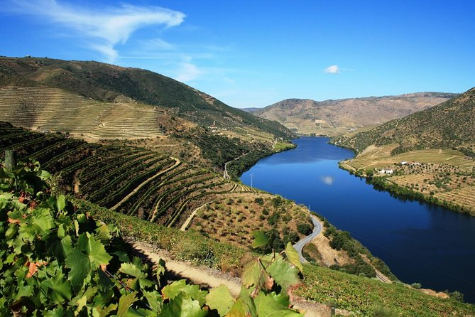 If you enjoy wine, this tour is definitively for you!<br><br>Book this tour leaving from Porto, and have the chance to visit three vineyards and sampling several Port's as well the famous Douro wines. See the difference between several producers, from small-sized family owned to the big corporate companies. <br><br>Culminate your experience trying the local gastronomy in one of the vineyards with majestic landscaping as your background set. <br><br>Don't miss the chance to visit the UNESCO World Heritage Douro's Valley beautiful scenery spending a day strolling along the magnificent Douro River and beautiful roads!