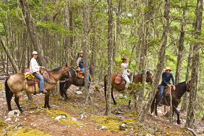 Half Day Guided Horseback Ride at Birkenhead Lake, ,