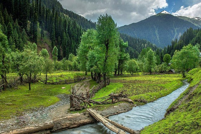 Kashmir 05 Nights and 06 Days Tour Package on privatebasis. Night stay In Houseboat, Shikara Ride , Srinagar local sight seen, Night Stay In Gulmarg, Gondola Ride, Nights Stay In Pahalgam, Aru, Beetab andChandanwari Sight seen, Sonmarg Day Trip. Breakfast & Dinner , Toll Taxes, Parking, transportation on private basis.