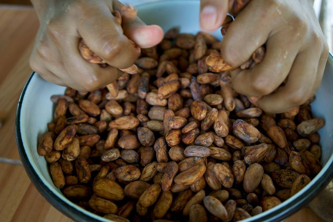 Visit a cocoa farm and learn how to make chocolate, Guayaquil, ECUADOR