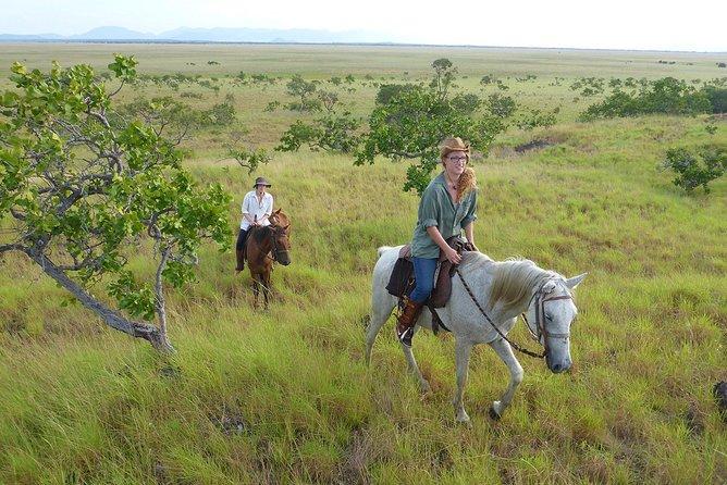Passeio a cavalo no cerrado de Lethem, Lethem, GUIANA