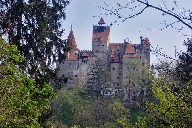 MÁS FOTOS, 2-Day Transylvania Culture Trek from Brasov - Small Group Tour