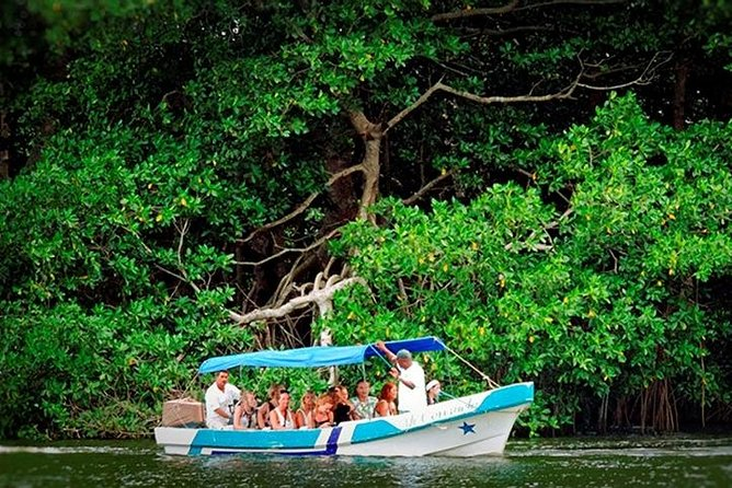 Come visit Tela, Honduras' wildlife refuge lagoon that holds many canals with mangroves and small islands which serve as a refuge for an abundant marine life, reptiles and over 342 species of birds.