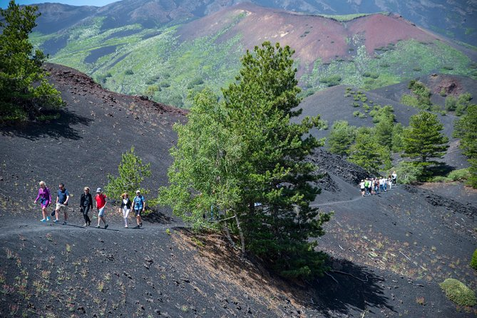 Small-group North Etna Tour by 4x4 Jeep, Taormina, ITALIA