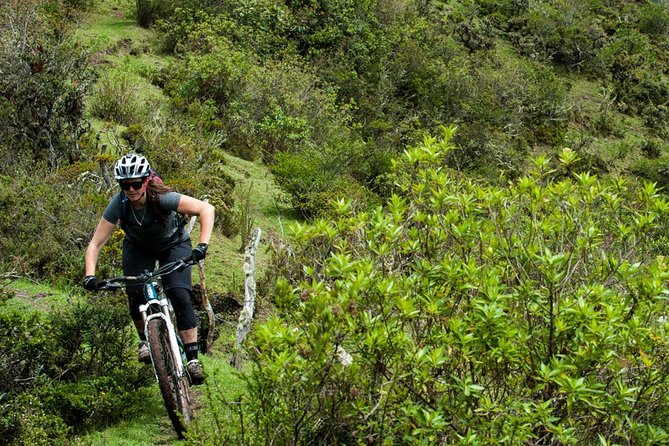 What better way is there to get to know a new place and sustainably get around than by bike?With Mindo BIking, you will be able to rent a bike for a day (from 8:30 am up to 6:00 pm) and take a cruise around the beautiful cloud forest and surrounding area.