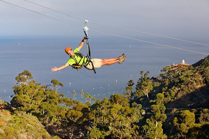 Descend Catalina Island's Descanso Canyon by zip line, dropping from 600 feet above sea level, including one run that is 1,100-lineal feet long. You will travel close to three-quarters of a mile over five consecutive zip lines. See the world at heights of 300 feet above the canyon floor and at speeds pushing 40 mph.
