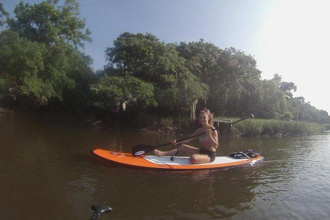 Recorrido de tabla de paddleboard por la fauna y flora de Charleston, Charleston, SC, ESTADOS UNIDOS