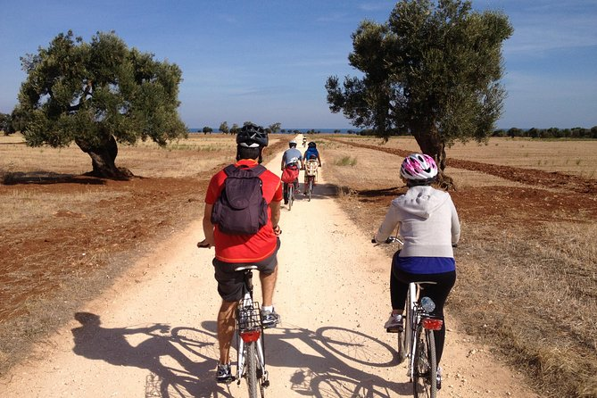 Puglia Bike Tour: Cycling Through the History of Extra Virgin Olive Oil, Brindisi, ITALIA