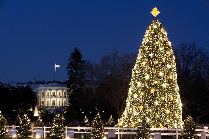 Washington DC Christmas Lights Walking Tour, Washington DC, ESTADOS UNIDOS