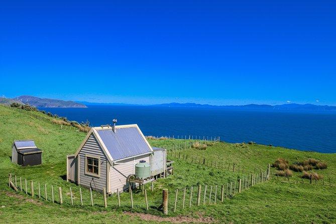 Wellington Scenic Farm Tour, Wellington, NOVA ZELÂNDIA