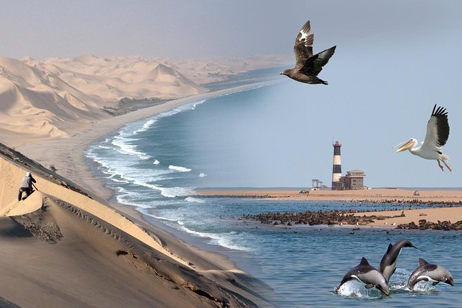 The Marine Desert Adventure gives you the ultimate combination of viewing our marine life on a leisure cruise on one of our luxury sailing catamarans on the Atlantic Ocean and exploring our fauna and flora with a ride in the breathtaking Sandwich Harbour Desert Area of the Namib Naukluft Park.