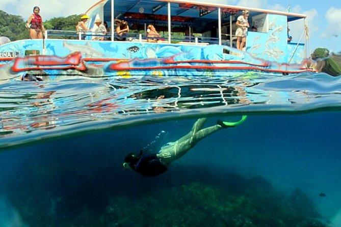 MÁS FOTOS, Half-Day Catamaran Tour of the Fernando de Noronha Archipelago
