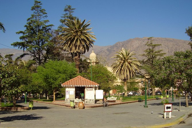 Full-day Cafayate, Lerma Valley, and Wine Tasting from Salta, Buenos Aires, ARGENTINA