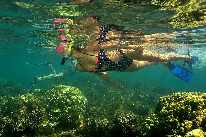 Kayak and Snorkel Tour from Flamingo Beach, Playa Flamingo, COSTA RICA