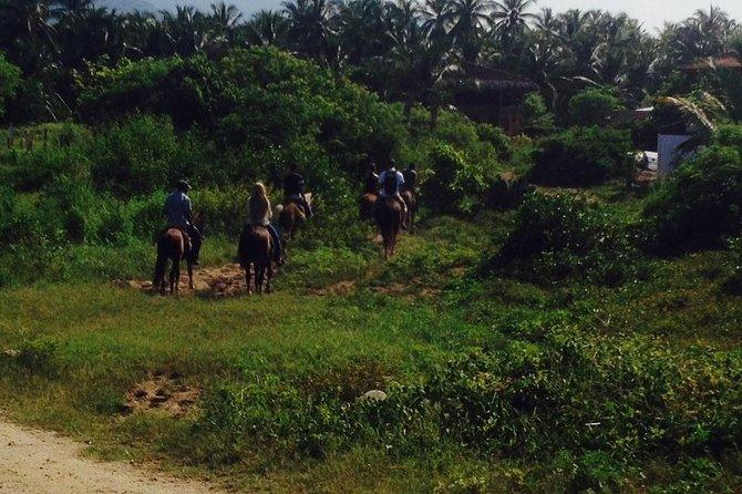Paseo a caballo por la playa y a través de una plantación de coco, Ixtapa, MEXICO