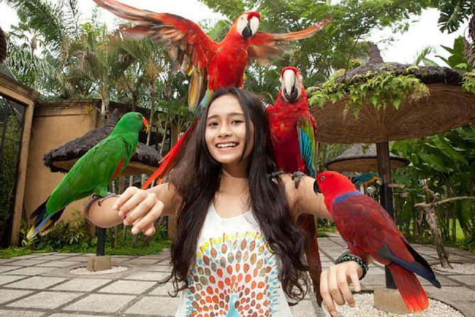 Package Private Tour we offer to you <br><br>Bali Bird Park & Kintamani Volcano Tour. Never missed the beauty of Bali nature has offer. Our friendly Bali Tour Driver always give the best service during the tour with ride the private car.<br><br>Visiting art village arount ubud,Visiting Batu Bulan village, the central of batik, and afterward visiting Celuk Village, the center of gold and silver crafts, and visit Mas Village, a sculpture center and then visiting the Ubud village, the center of craft painting.<br><br>Visiting coffee, chocolate and spice plantations and while drinking coffee and ginger tea, while enjoying a natural village atmosphere, it's free<br><br>If there is a place that you do not want to visit, immediately talk with the driver to continue the next trip. the satisfaction and comfort of your trip is our goal<br><br>Our professional tour driver service with a typical Balinese smile. Make this tour package your choice. You will get an unforgettable personal experience. BOOK NOW<br>