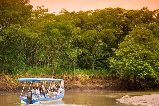 A 2 hour boat safari on the Tempisque River bordering Palo Verde National Park viewing a vast array of wildlife such as iguanas, crocodiles, monkeys, and many species of birds. After a plentiful Costa Rican style meal, we will visit the Guaitil Pottery village that is famous throughout Costa Rica and the rest of Central America for its pre-Columbian Chorotega style.