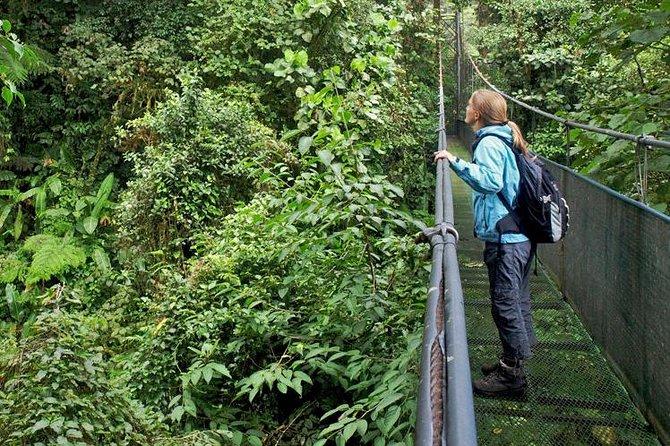 Sky Walk Tour with Hanging Bridges and Nature Preserve, ,