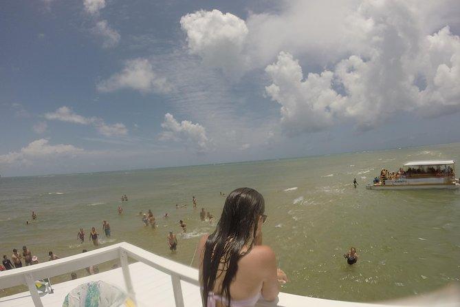 Excursión de un día a Praia dos Carneiros desde Boa Viagem, Pina o Piedade- Con Navegacion, Recife, BRASIL