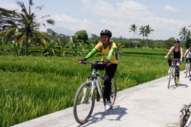 Spend a day cycling and exploring traditional Balinese villages on this 6-hour bike tour. You will visit the villages ofBayung Gede Kintamani, Taro, and Keliki, and enjoy a 2-hour downhill route through the countryside that provides views of the scenic Bali landscape, temples, and rice fields. You have the chance to see a bit of daily life for the Balinese people while learning more about island culture. Tour is limited to 15 people.