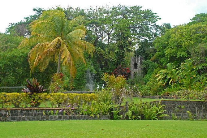 This tour includes the main points of interest, such as National Museum, Berkeley Memorial, Independence Square, old historical churches on the island, The Egrets Birds Nest, Bloody Point, Wingfield Plantation as well as the beginning of the rainforest, the Botanical Gardens at Romney Manor home of Caribelle Batik. We continue on to Black Rocks this is where the volcanic lava flow formed rock formations on the island's coastline. We proceed to the beginning of the Southern Peninsula atop Timothy hill where there is a beautiful Panoramic view of both the Atlantic ocean as well as the caribbean sea adjacent to each other