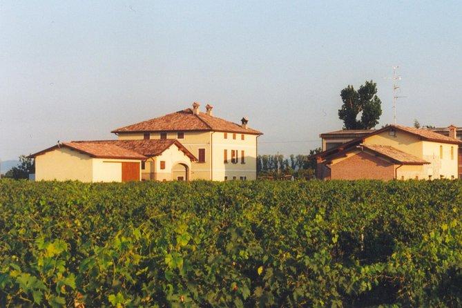 1.5-hour Traditional Italian Balsamic Vinegar Tasting Tour in Modena, Parma, ITALIA