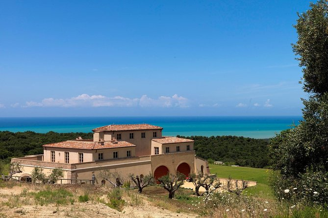 Discover the art of making wine in Tuscany seaside. Follow your guide from the vineyard to the cellar, in this elitist estate. Enjoy typical appetizer on hillside terrace.