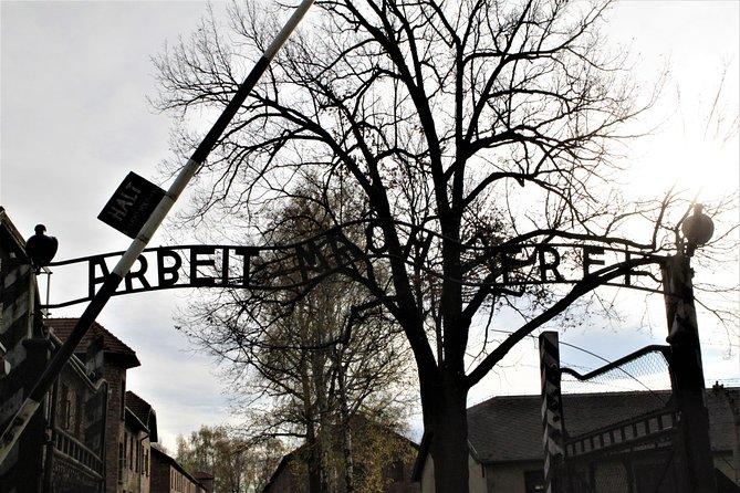 Excursão particular ou compartilhada ao Memorial e Museu de Auschwitz-Birkenau saindo de Krakow, Cracovia, POLÔNIA